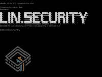 Lin.Security 1 screenshot