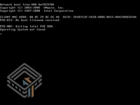 Damn Vulnerable Linux (DVL) 1.1 (Blackhat Edition) screenshot
