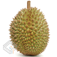 Durian 1 screenshot
