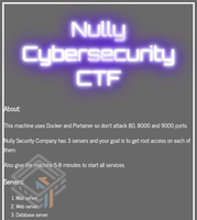 Nully Cybersecurity 1 screenshot
