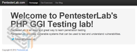 Pentester Lab CVE-2012-1823: PHP CGI screenshot