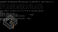 Pentester Lab S2-052 screenshot