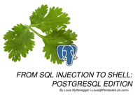 Pentester Lab From SQL injection to Shell: PostgreSQL edition screenshot